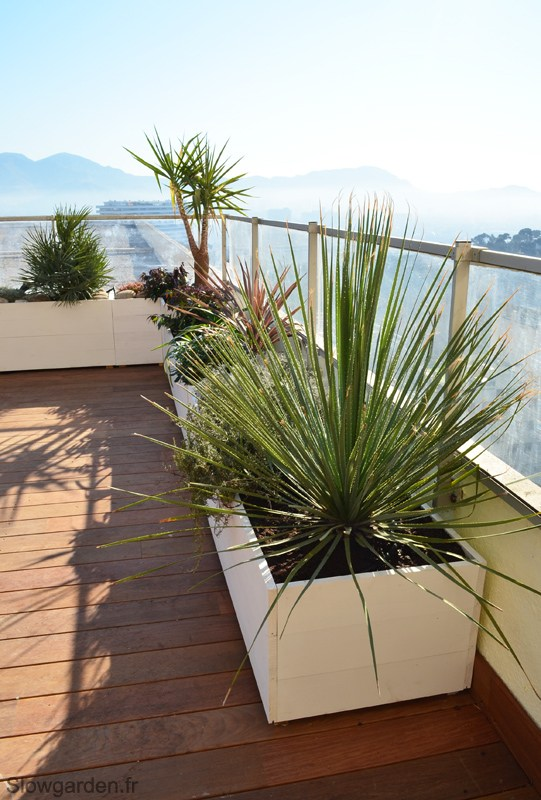 Grande terrasse californienne marseille 13008 for Terrasse amenagement plantes